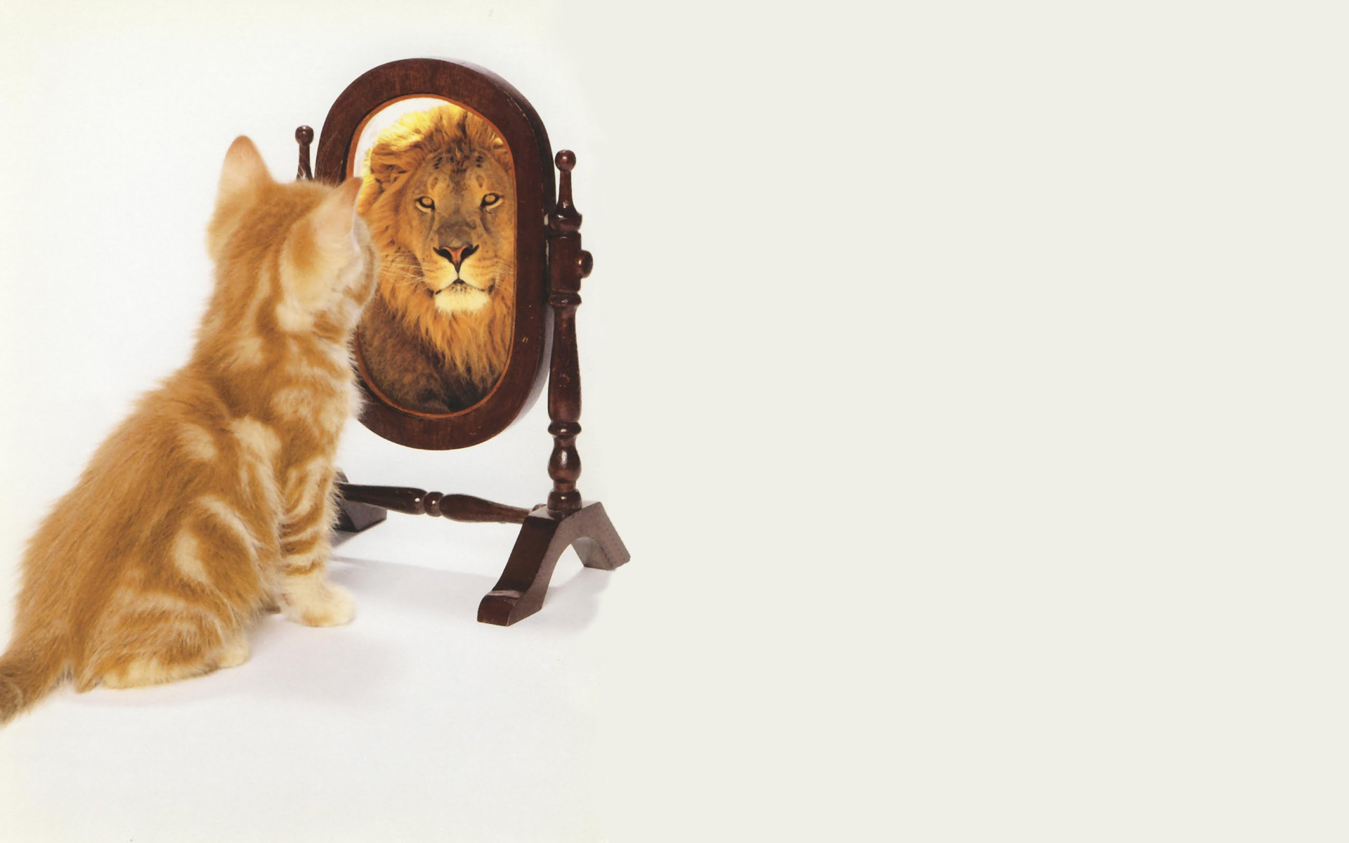 Being self-aware: do you see what they see in you?